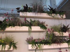 Kasvien hyvinvointia lisäävä vaikutus on tutkimustenkin mukaan huomattava.